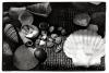 Annie Leibovitz: Život objektivem (2006)