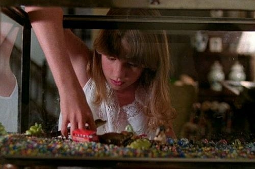 Aligátor (1980)