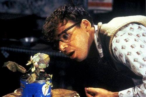 Malý krámek hrůz (1986)