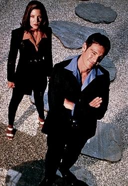 Chameleon (1996/1) [TV seriál]