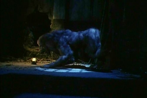 Americký vlkodlak v Paříži (1997)