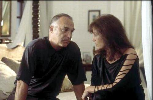 Přitažlivost (2004)