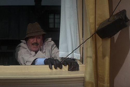 Stopa Růžového pantera (1982)