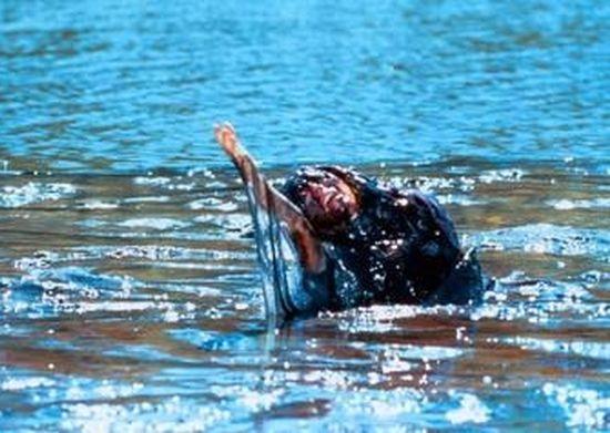 Creepshow: Plíživý děs (1987)