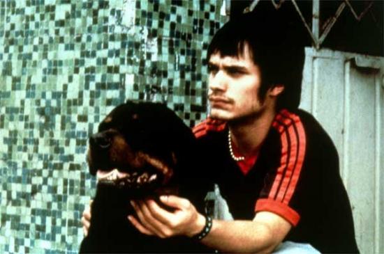 Amores perros – Láska je kurva (2000)