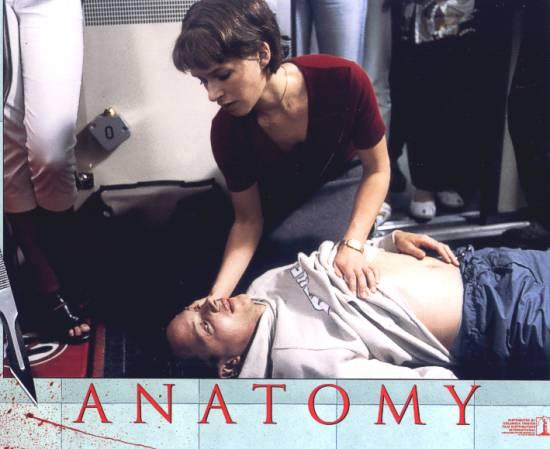 Anatomy (?)