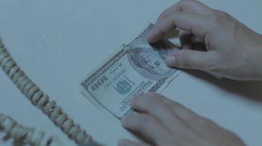 7 krabic (2012)