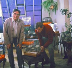 Sardinky, aneb život jedné rodinky (1986) [TV film]