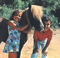 Poly na cestách (1961) [TV seriál]