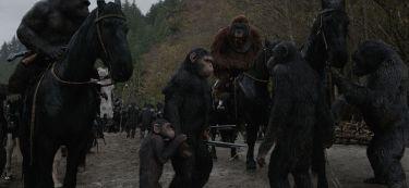 Válka o planetu opic (2017)