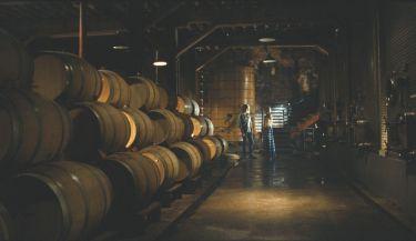 Víno roku (2008)