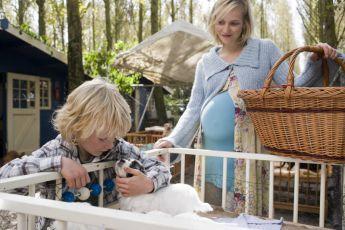 Morrison bude mít sestřičku (2008)