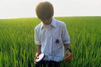 Vše o Lily Šu-Šu (2001)