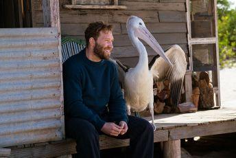 Chlapec a pelikán (2018)