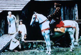 Plaváček a děd Vševěd (1981)