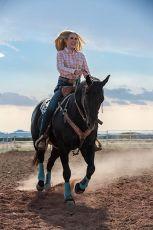 Chůze. Jízda. Rodeo (2019)