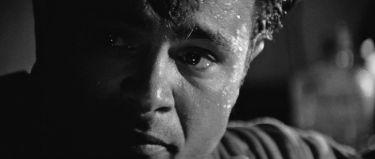 Chladnokrevně (1967)