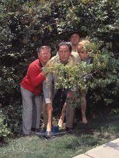 To je ale bláznivý svět (1963)