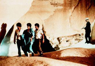 Růžové poupě (1974)