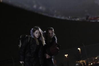 Mravenčí invaze (2007) [TV film]
