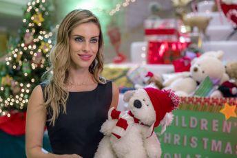 Vánoční okouzlení (2017) [TV film]