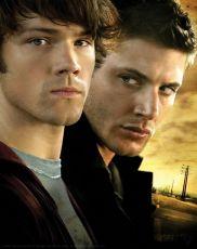 Lovci duchů (2005) [TV seriál]
