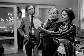 Prípad krásnej nerestnice (1974)