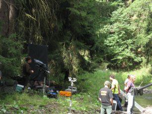 Cesta do lesa (2012) [DCP]