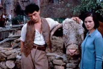 Farma chabé útěchy (1995) [TV film]