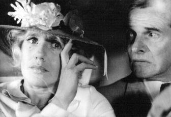 Slečny z Vlčí (1979)