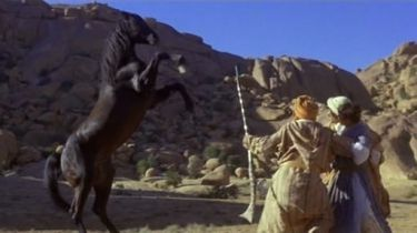 Návrat černého hřebce (1983)