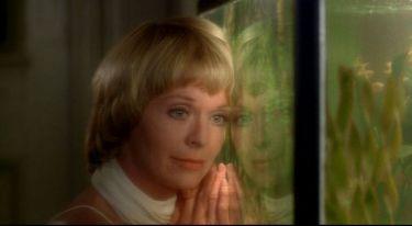 Tichý společník (1978)
