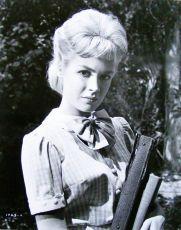 Tammy a doktor (1963)