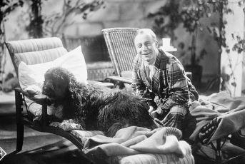 Lachende Erben (1933)