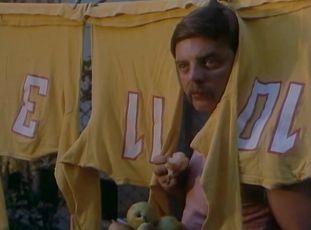 Sojky v hlave (1983)