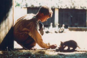 Pelle Dobyvatel (1987)