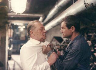 Dobří holubi se vracejí (1987)