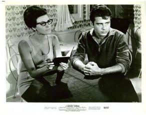A Swingin' Summer (1965)