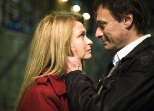 Muži, kteří nenávidí ženy (2009)