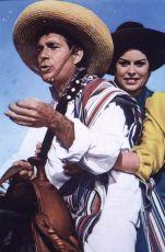 I magnifici tre (1961)