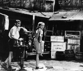 Zelená knížka (1948)