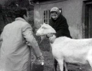 Děti mají zpívat (1977) [TV inscenace]