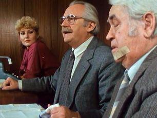 Advokát ex offo (1988) [TV minisérie]