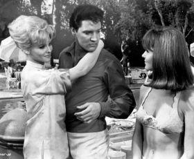 Miláček žen (1966)