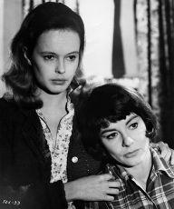 Lišák (1967)