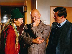 Blázni, vodníci a podvodníci (1980)