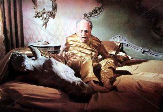 Il figlioccio del padrino (1973)