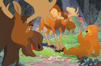 Medvědí bratři (2003)