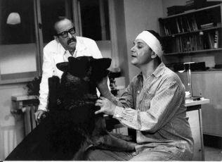 Černý vlk (1971)