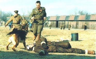 Rin Tin Tin (2007)